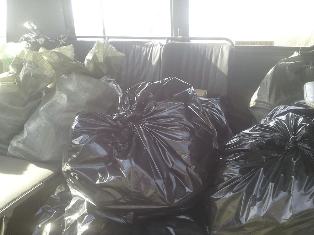 За чистый берег. Уборка мусора на берегу Псковского озера